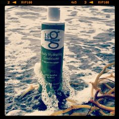 Daily Hydrating Conditioner adds body, bounce & shine while keeping hair tangle free.