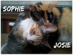 Sophie and Josie