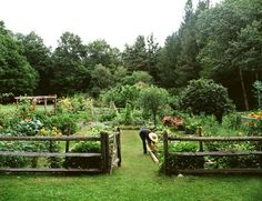 Fenced Garden, paint it white