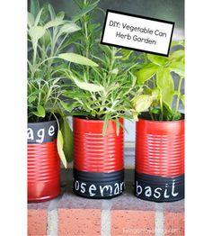 DIY Tin Can Herb Garden - Cute Herb Garden made from repurposed tin cans. DIY Tin Can Herb Garden - Gardening For Beginners, Gardening Tips, Organic Gardening, Pallet Gardening, Garden Pallet, Balcony Gardening, Organic Herbs, Urban Gardening, Indoor Gardening