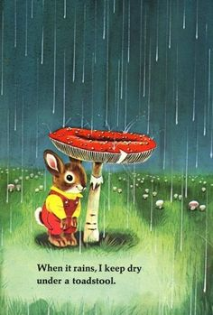 When it rains, I keep dry under a toadstool.