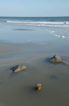 Pa And Child My Photography Pinterest Beach Resorts South Carolina Places
