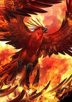 66 ideas for phoenix bird mythology dragon Magical Creatures, Fantasy Creatures, Beautiful Creatures, Fantasy World, Dark Fantasy, Phoenix Art, Phoenix Animal, Phoenix Images, Phoenix Rising