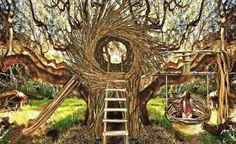 Artista se baseia em ninhos de pássaros para fazer tipo diferente de casa na árvore