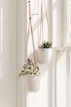 Loren Leather Ceramic Hanging Planter - 15 hanging plants In Living Room ideas Hanging Plants Outdoor, Diy Hanging Planter, Hanging Succulents, Indoor Plants, Hanging Gardens, Potted Plants, Cactus Plants, Garden Plants, Planter Ideas