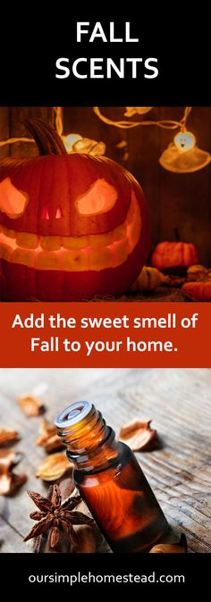 Fall Scents - Pumpkin Spice You've gone to the pumpkin farm, picked out the perfect jack-o'-lantern, carved it to perfection and now have it displayed proudly on your front porch or dining room table. Now it's time to enjoy the fall scents of pumpkin spice. #fall #pumpkinspice #fallscents