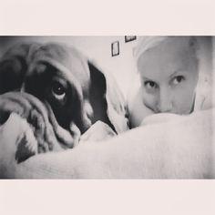 #Dog/ #bigdog, #FrenchMastiff, #DoguedeBordeaux #Bordeauxdoggie #doggie #mydog