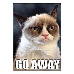 Grumpy Cat Go Away Magnet