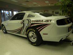 Mustang Cobra Jet, 2014 Ford Mustang, South Bend, Silver Lake, Mustangs, Drag Racing, Cars Motorcycles, Race Cars, Trucks