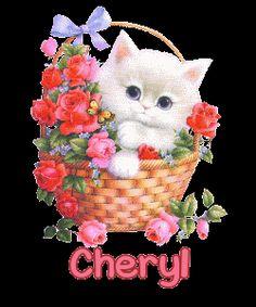 Cheryl   -   Basket Kitty