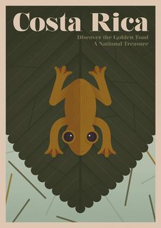 The golden toad called a tiny area of Costa Rica home until its demise in 1989.