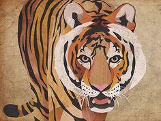Tiger designed by Jonathan Woodward. Tiger Drawing, Tiger Painting, Nottingham Contemporary, Character Inspiration, Character Design, Tiger Design, Tiger Eyes, Tiger Tiger, Big Cats
