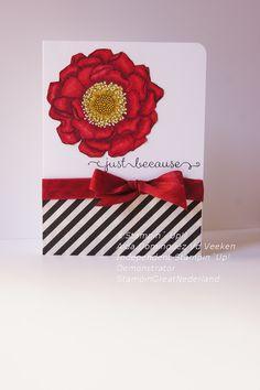 Blended bloom stamp, Blendabilities, Stampin' Up!