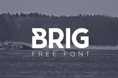 Free PSD Goodies and Mockups for Designers: Search results for font