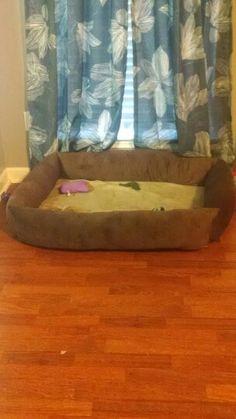 My dog Gargys new bed. Hand sewn.