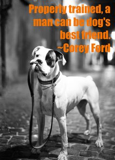 a man's best friend! #dog #Boxer #dogs #pet #pets | www.fordogtrainers.com