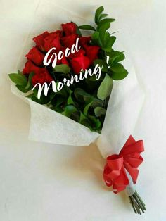 Good Morning Flowers Quotes, Sweet Good Morning Images, Good Morning Friends Images, Good Morning Beautiful Pictures, Good Morning Kisses, Good Morning Image Quotes, Special Good Morning, Good Night Love Images, Good Morning Cards