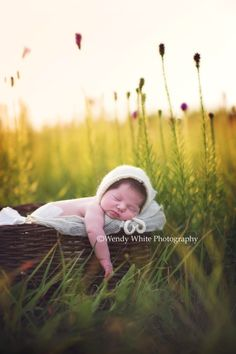 Wendy L. White Photography ~ Newborns, Babies, Children, Families, Maternity, Teens serving Fort Smith, AR and surrounding areas. Best Newborn, Baby, Child, Familiy, Teen Photographers