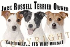 if this isn't true, idk what is...JACK RUSSELL