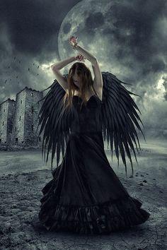 3ea5ccc5010a899fa2501604cf5ad1e3--gothic-angel-black-angels.jpg (533×800)