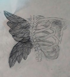 crooked wings still learn to fly xxx