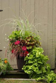 We're gardeners, too! | Fine Gardening