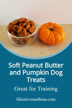 These soft baked peanut butter and pumpkin dog treats are easy to make and only have 3 ingredients. Canned Pumpkin, Pumpkin Puree, Soft Dog Treats, Peanut Butter Dog Treats, Pumpkin Dog Treats, Dog Treat Recipes, 3 Ingredients, Lilies, Baking