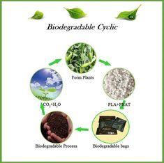 Biosheet - Clean kitchen sink, clean hands. Kitchen Sink, Biodegradable Products, Hands, Cleaning, Drinks, Food, Drinking, Beverages, Essen