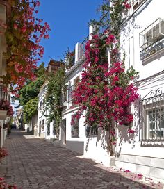 Marbella (Old Town), Spain Marbella Old Town, Great Places, Beautiful Places, Places To Travel, Places To Visit, Nerja, Puerto Banus, Madrid, Spain And Portugal