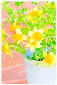 Daffodils. Painted in @waterlogue.
