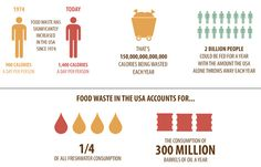 The Impact of Food Waste on Climate Change (And Just About Everything Else) : TreeHugger