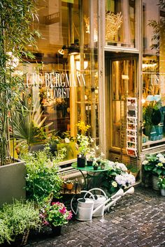 Florist in Zurich, Switzerland - using a lot of GREENERY instead of flowers to save money! eg, potted plants like orchids