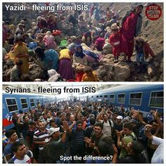Yazidis have women & children refugees. Syrians coming to Europe & USAare predominantly fighting age males