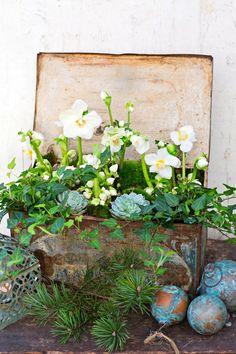 7 x joulun kukka-asetelmat | Meillä kotona Potting Sheds, Simply Beautiful, Origami, Planter Pots, Floral Wreath, Wreaths, Flowers, Diy, Painting