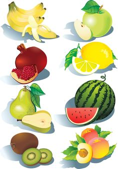 Realistic fruits icons vector material 01…