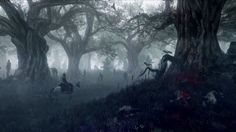 Fantasy Forest the Witcher 3 Wild Hunt Game Image The Witcher 3, The Witcher Wild Hunt, Witcher Art, Fantasy Forest, Dark Forest, Dark Fantasy, Magical Forest, Fantasy Kunst, Fantasy Art