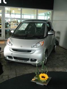 Smart Cars - Beautiful - Cars