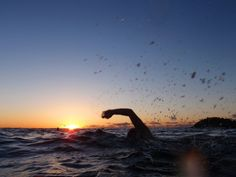 Sunrise swimming woulds love to do this, have done late night swimming!!!