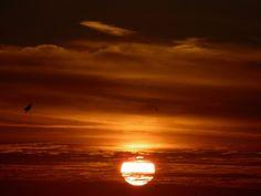 Setting Sun near Orlando Florida