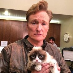 Chat show guest! TV host Conan O'Brien also had a cuddle with the famous feline. Grumpy Cat Humor, Cat Memes, Grumpy Cats, Memes Humor, Kitty Cats, Crazy Cat Lady, Crazy Cats, Men With Cats, F2 Savannah Cat