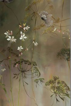 Claire Basler e il castello di Beauvoir - by Delia - Furighedda gardening Botanical Art, Botanical Illustration, Illustration Art, Art Floral, Chinoiserie Wallpaper, French Artists, Painting Inspiration, Flower Art, Painting & Drawing