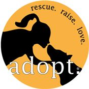My dog is a rescue. Is yours?
