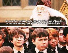 Harry Potter & the Sorcerer's Stone.