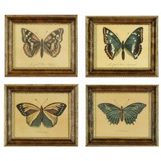 Hal Kramer Co. // Vintage Butterfly Wall Decor, Set of 4 Butterfly Wall Decor, Butterfly Decorations, Butterfly Frame, Vintage Butterfly, Home Goods Decor, Wood Home Decor, Frame Wall Decor, Wall Art Decor, Framed Wall