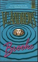 VC Andrews Brooke.  This is the third book in the Orphans series.  Another good read!