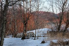 http://mylillecrazyworld.blogspot.no/2012/01/picture-foto-tur.html