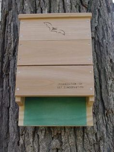This bat house will hold up to 300 mosquito eating bats! Bats can eat thier body weight in night-time insects in a single night! Control mosquitoes naturally with a bat house. Looker Bat houses are built to the Organization for Bat Conservations specifications, which means they are 80% likely to attract bats, compared to smaller houses, which may only have up to a 10% chance of attracting bats...