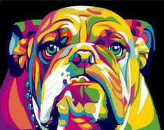 Paint By Number Colorful Dog