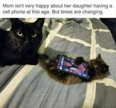 Funny Animal Pictures Of The Day – 20 Pics | Follow @gwylio0148 or visit http://gwyl.io/ for more diy/kids/pets videos