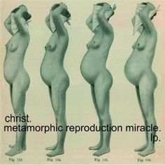 'metamorphic reproduction miracle' lp by christ.